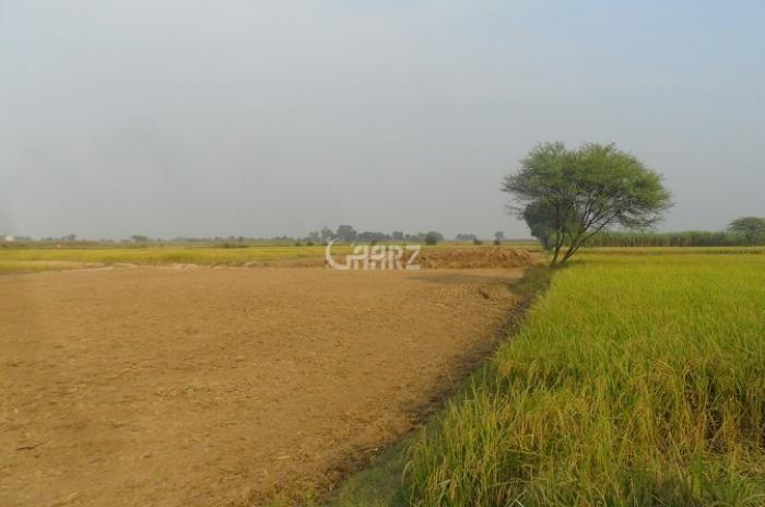 32 Kanal Agricultural Land for Sale in Multan Jhaniya Road