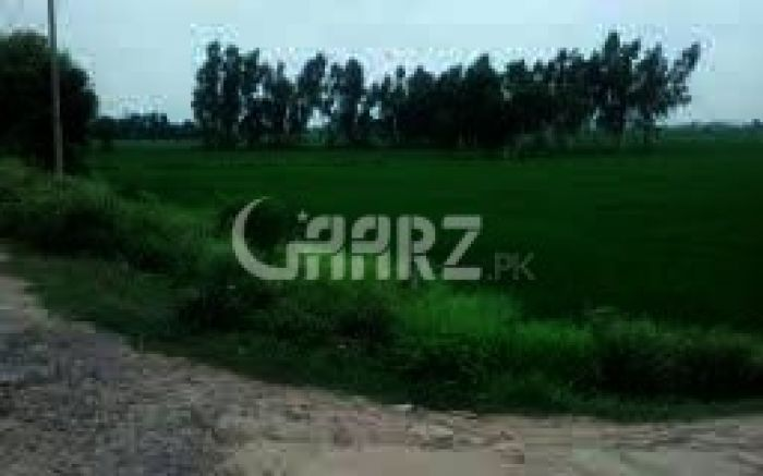 500 Marla Agricultural Plot For Sale In Fateh Jang Attock.