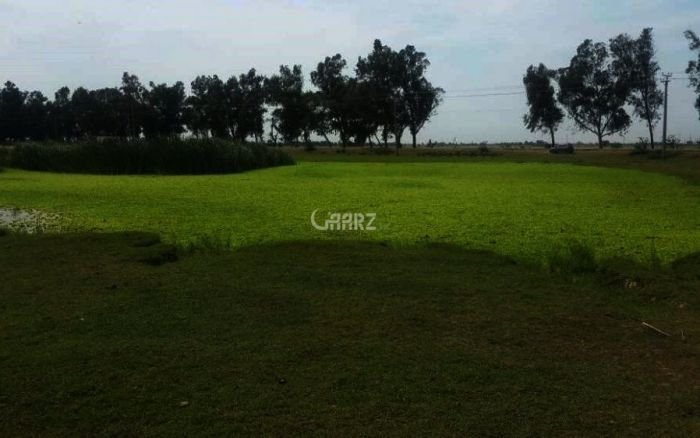 90 Marla  Commercial Plot For Sale At Adda Stop,Sialkot