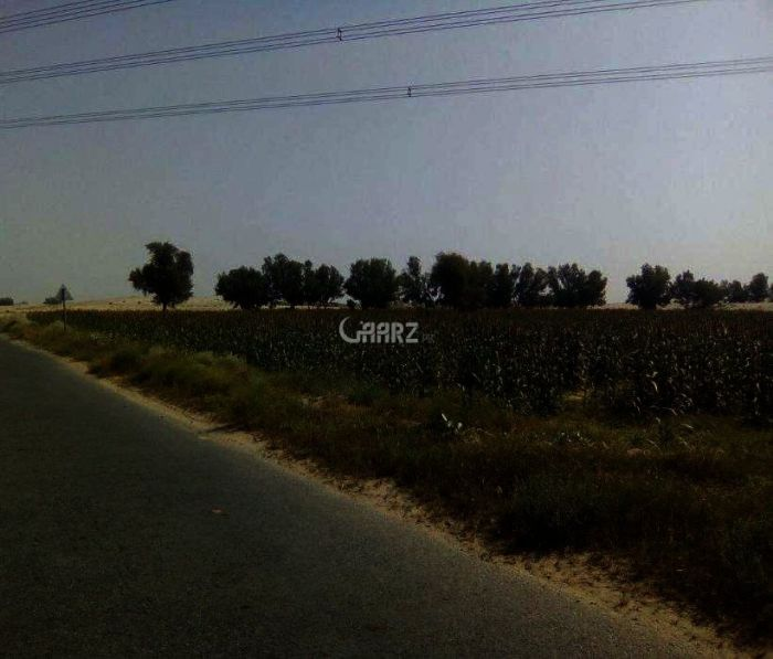 200 Kanal Agriculture Land For Sale In Tehsil Jahanian, Multan