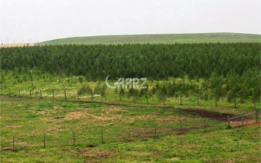 7 Marla plot For Sale in I-11/1, Islamabad