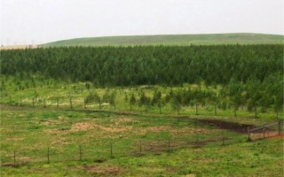 7 Marla Plot For Sale In I-11/2, Islamabad