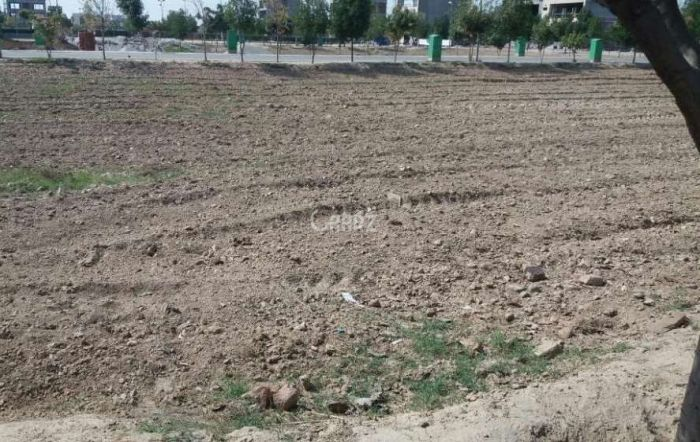 17 Kanal Plot For Sale In Canal Road,Faislabad