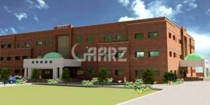 Building in Quaid e azam Industrial Estate Lahore | Quaid e