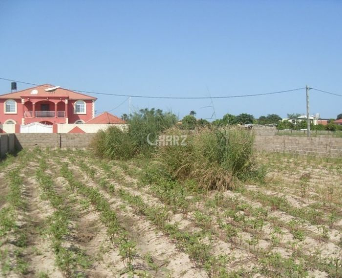 8 Kanal Agricultural Land Is Available For Sale In Gujranwala