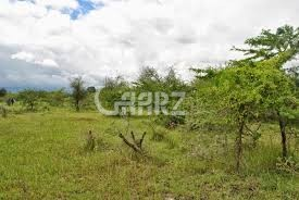 1 Kanal Plot For Sale In Block C, DHA Phase 6,Lahore