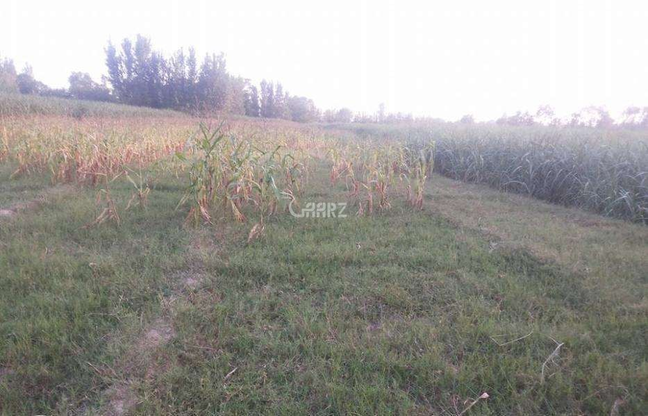 1  Kanal  Plot  For  Sale  In  DHA Defence Phase 5,Islamabad