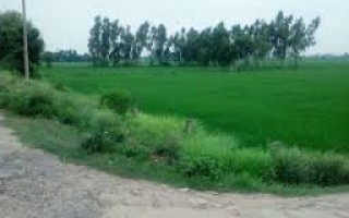 1  Kanal  Plot  For  Sale  In University Town, Islamabad