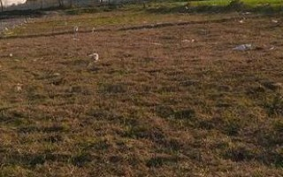 10  Marla Plot For Sale In PECHS,Islamabad