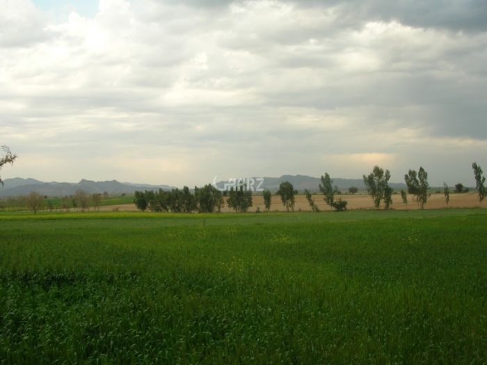16  Marla Plot For Sale In  Nawai Killi Bhittani, Quetta