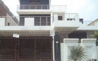 1 Kanal Bungalow For Rent