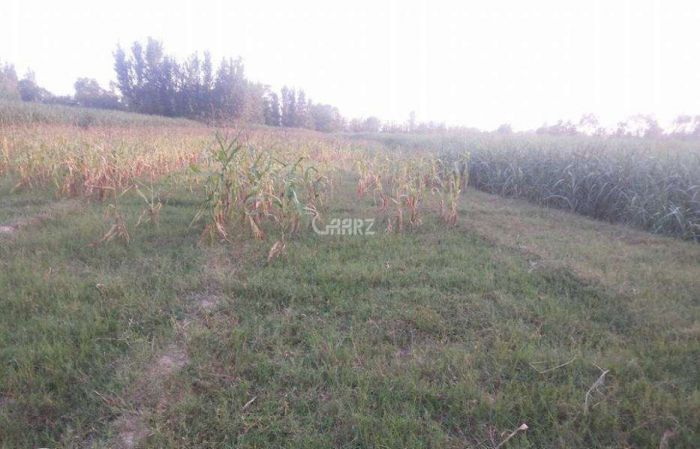 7  Marla Plot For Sale In  Faisal Town, Fatah Jang