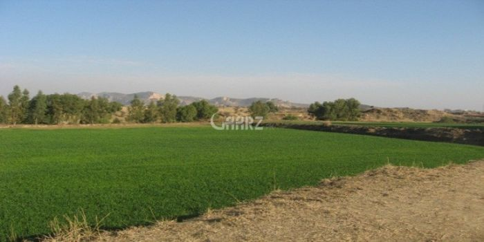 1  Kanal  Plot  File  For  Sale  In  Ministry of Commerce Society, Islamabad