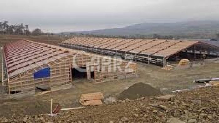 144000 Square Feet Poultry Shed For Sale In Multan Road, Lahore