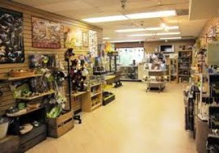 225 Square Feet Commercial Shop for Rent in Lahore Bahria Town