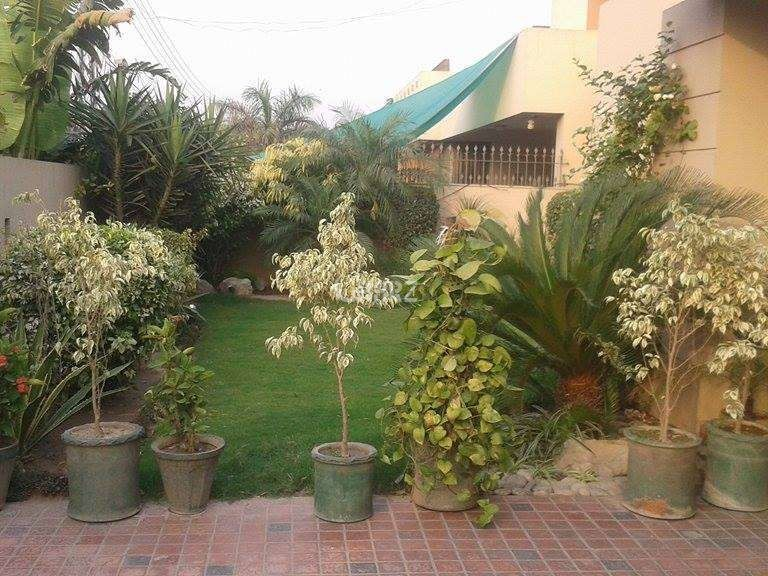 24 Marla House For Rent In G-10/2, Islamabad