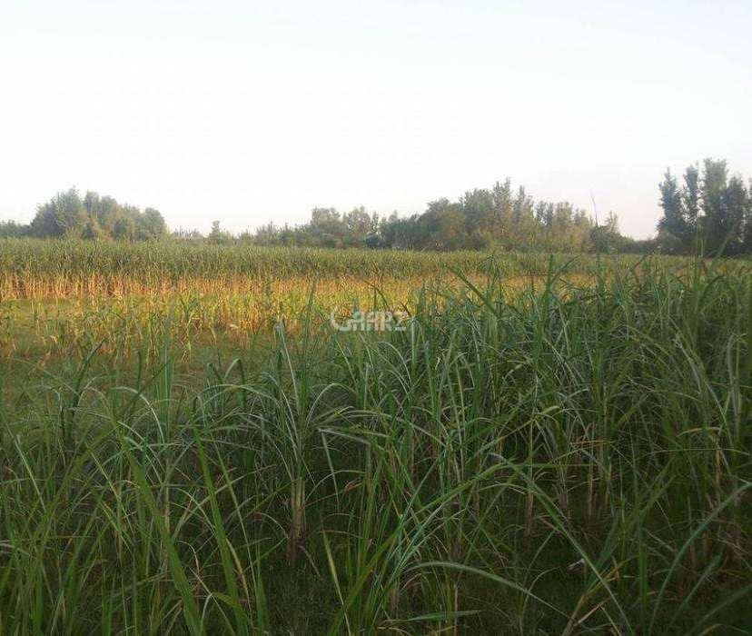 272 Square Yard Plot for Sale in Islamabad D-12/4