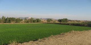 4 Marla Residential Land for Sale in Rawalpindi Gulraiz Housing Scheme