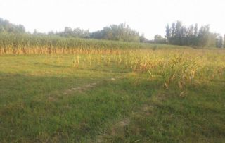 400 Square Yard Plot for Sale in Islamabad F-11/2
