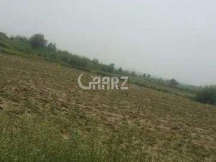 48 Marla Agricultural Land for Sale in Sargodha Khushab Road