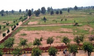 2 Kanal Commercial Land for Sale in Karachi DHA Phase-8