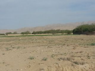 2200 Square Feet Residential Land for Sale in Karachi DHA Phase-5