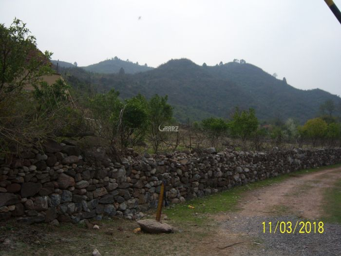 1500 Kanal Agricultural Land for Sale in Murree Moza Baroha