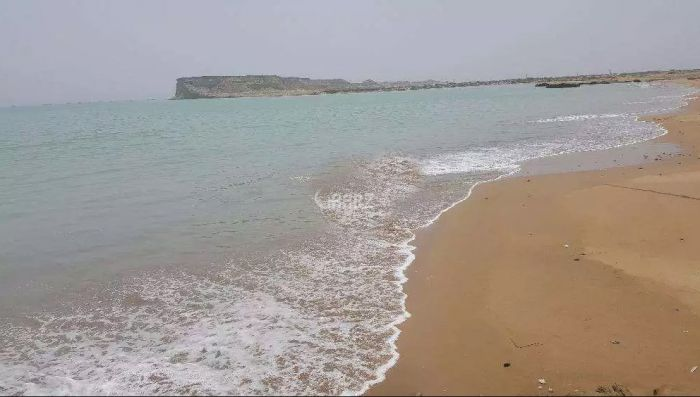 80 Kanal Commercial Land for Sale in Gwadar Mouza Shabi