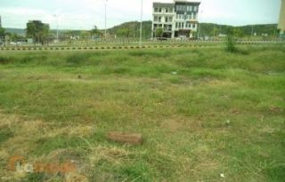 104 Kanal Agricultural Land for Sale in Multan Mozha Khas
