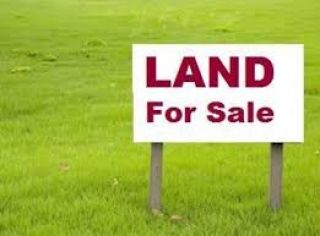 391.11 Kanal Agricultural Land for Sale in Muzaffargarh Rukh Kalang Southern Adjacent At Head Bakayni