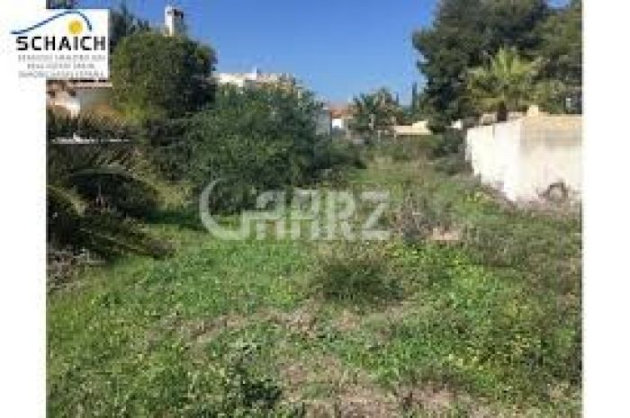 400 Kanal Agricultural Land for Sale in Muzaffargarh Moza Noor Shah Tallai Mm Road Kot Addu