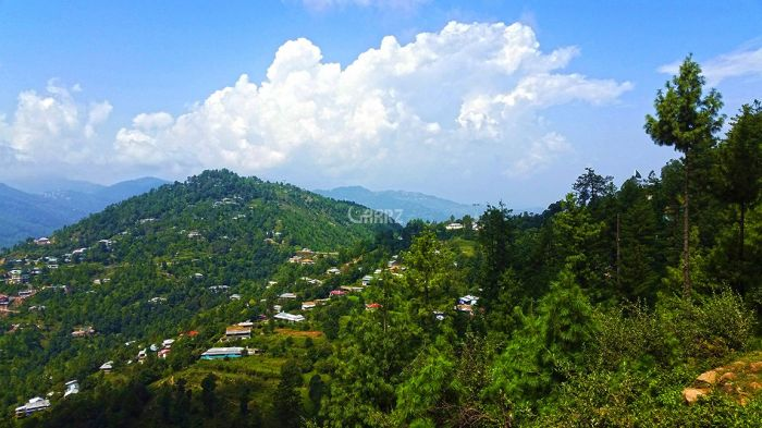 23 Kanal Residential Land for Sale in Murree Patriata