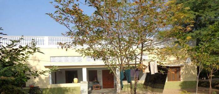 80 Kanal Agricultural Land for Sale in Sargodha Shahpur City Sargodha Khushab Road