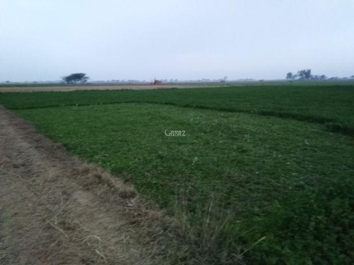 16 Kanal Agricultural Land for Sale in Sialkot Qila Kalar Wala (nia Manga)