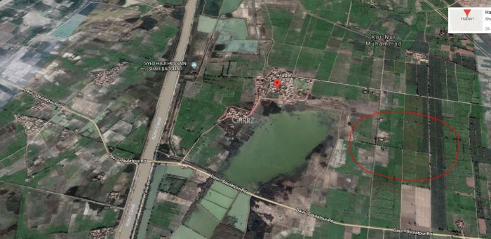 512 Kanal Agricultural Land for Sale in Nawabshah Daur