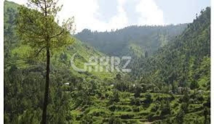 1 Kanal Residential Land for Sale in Murree Muree Enclave, New Murree