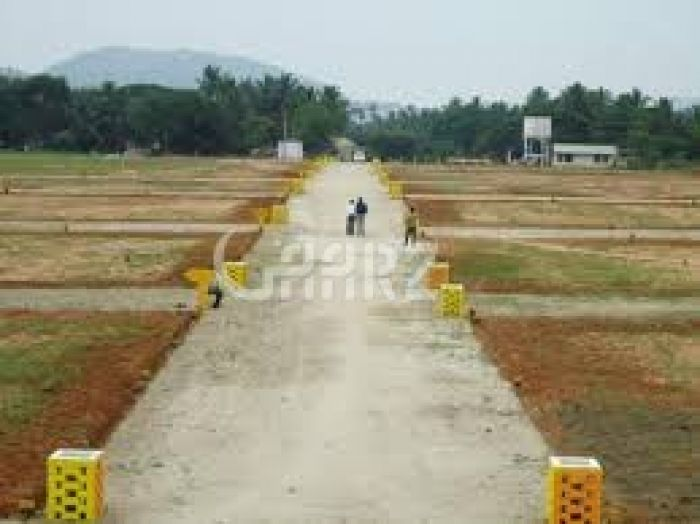 250 Square Yard Residential Land for Sale in Karachi Precinct-6