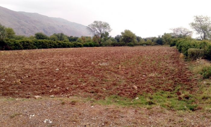 35 Kanal Agricultural Land for Sale in Hassan Abdal Bharwal