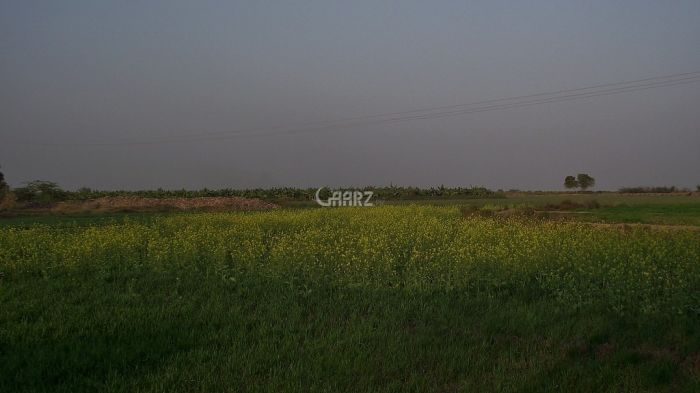 1000 Square Yard Agricultural Land for Sale in Karachi Gharo