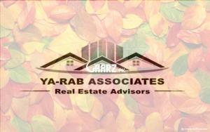 YA RAB ASSOCIATES DHA LAHORE