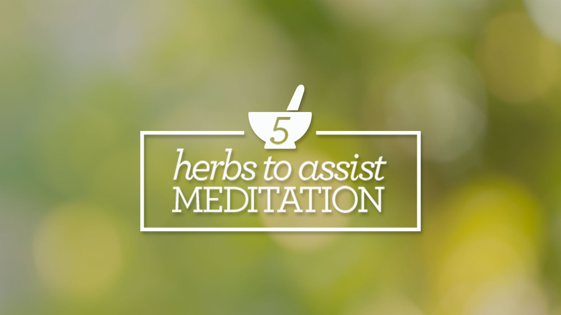 Five Herbs to Assist in Meditation | Yoga International