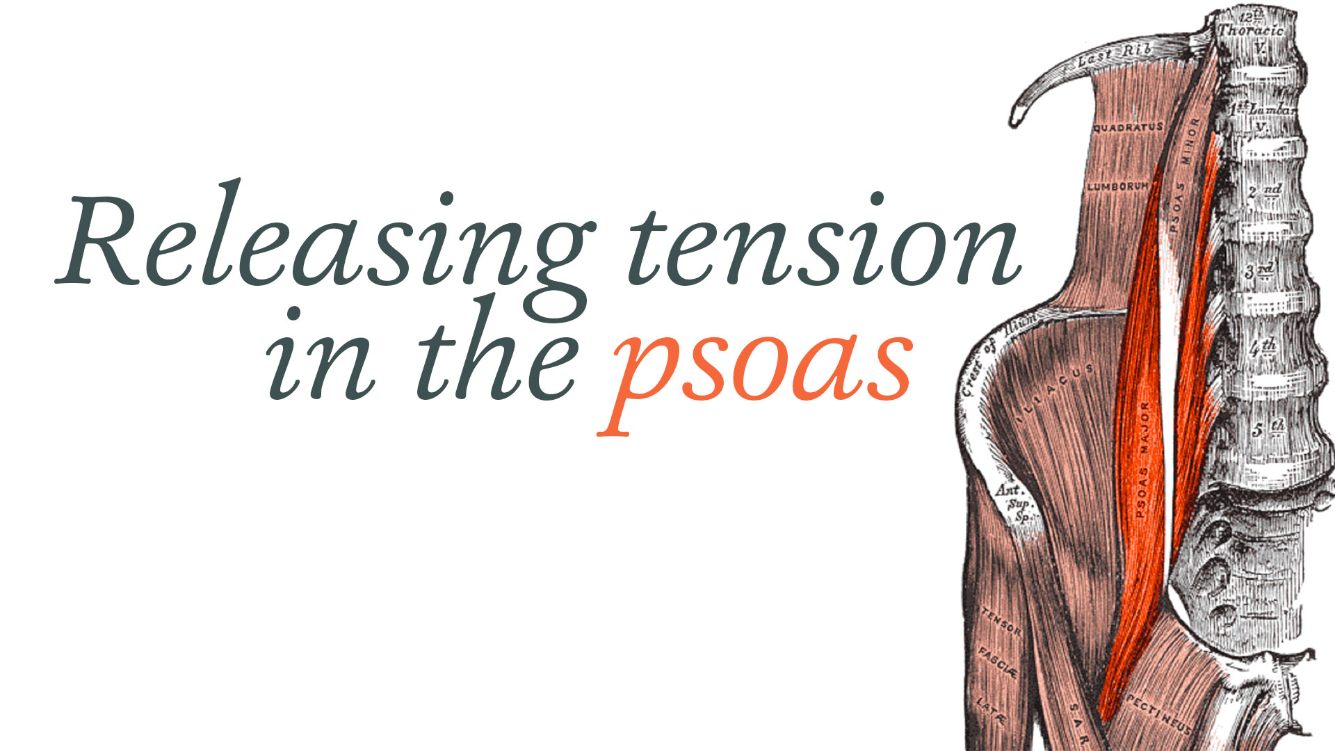 release tension in the psoas yoga international