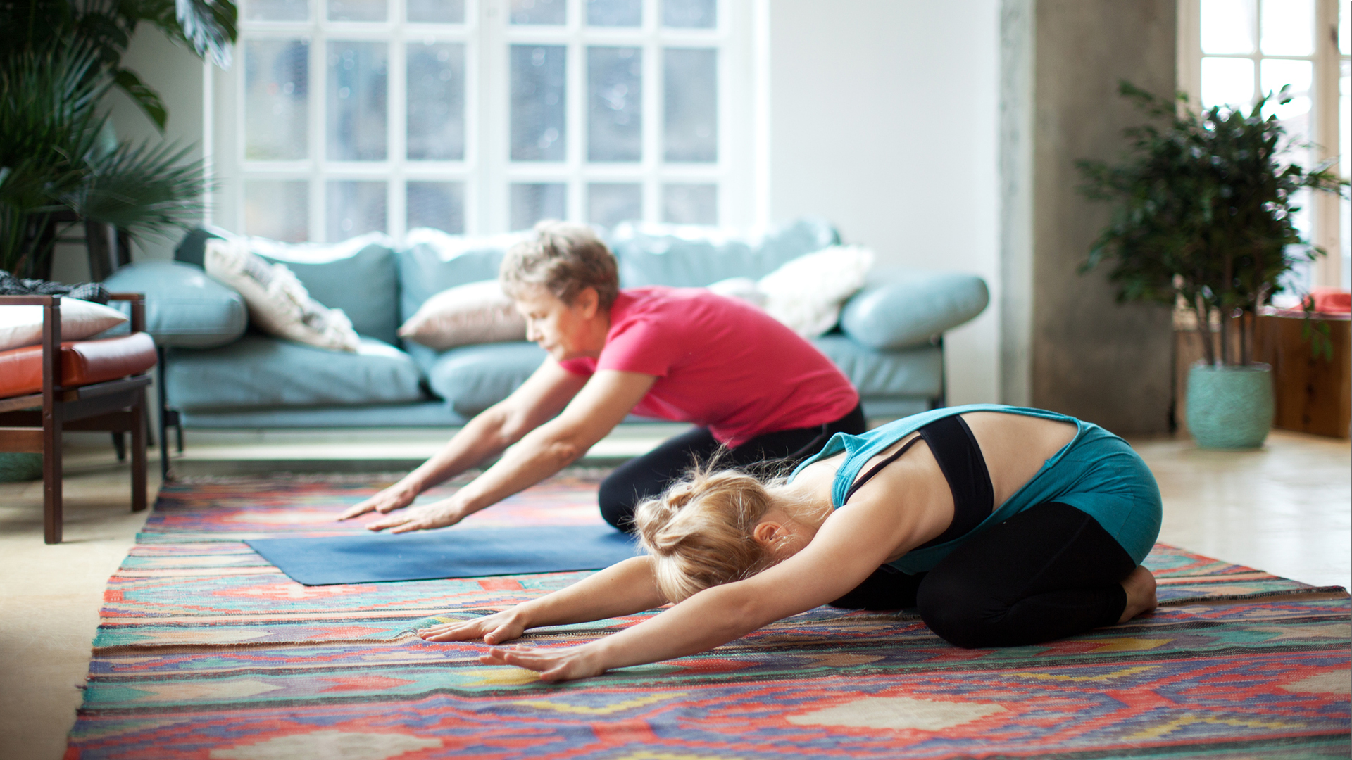 What's the Difference Between Yoga Therapy and Accessible ...