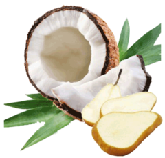 Coconut Pearfection - 30mL