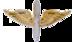 USAAFOfficer Collar Insignia