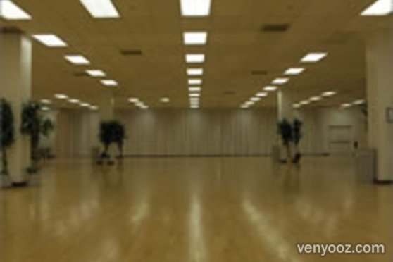Ballroom At Charleston Heights Arts Center Las Vegas Nv