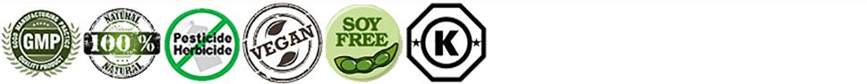 Verifiable Logos
