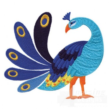 Jacobean Peacock 1