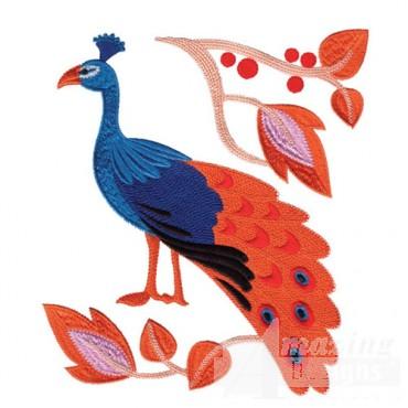 Jacobean Peacock 2