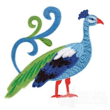 Jacobean Peacock 4
